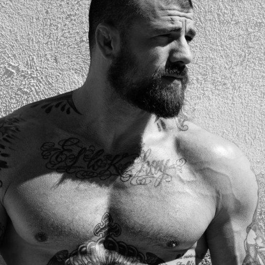 beau bear tatoué et sculpté